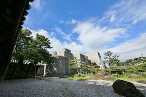 谷村美術館とイロハモミジ
