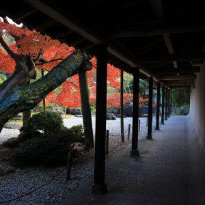谷村美術館 回廊